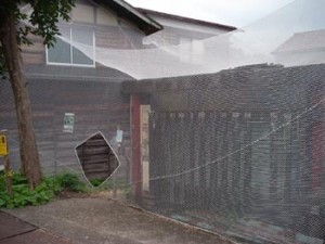 "Hisako and Tomoya Sugiwara and Showa Women's University Sugiwara Seminar, ""Snow in/Snow out"" 2003, old houses, white netting"